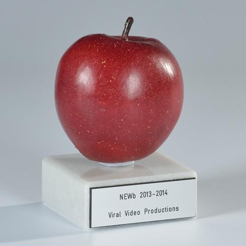 01maaw001maatwerk-awards-laten-maken-custom-awardsv1_0003_laag-36