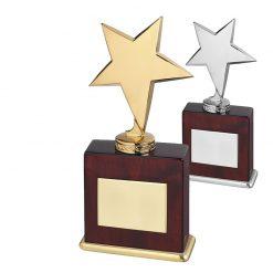 30AWSTME101_ster_sterren__star_awards