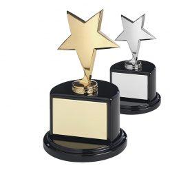 30AWSTME102_ster_sterren__star_awards