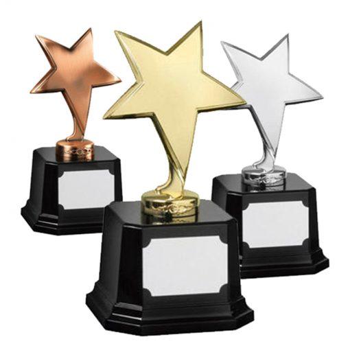 30AWSTME103_ster_sterren__star_awards
