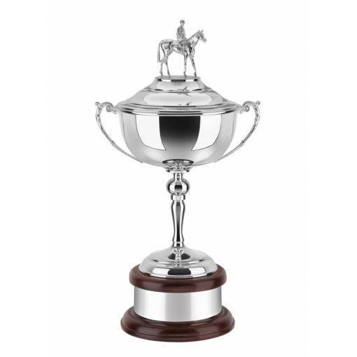 30sppame005_verzilverde_dressuur_award_silver_plated_equestrian_award_trophy
