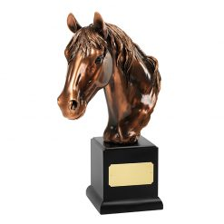 30SPPAME006_verbronsde_paardensport_award_bronze_plated_equestrian_award_trophy