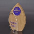 35-6101KRT-B-awards-plaquettes-acrylaat-houten-hout